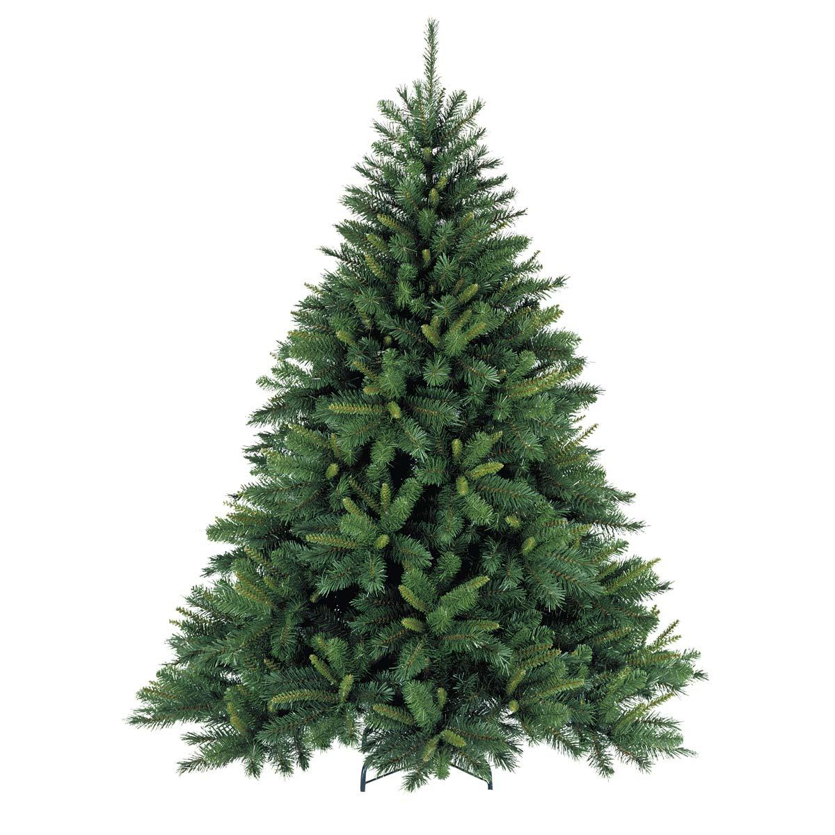 Premium Grade Nordmann Fir - Mistletoe & Pine